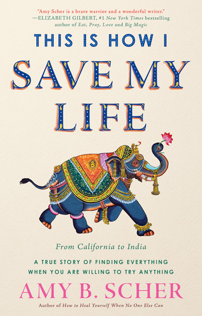 This is How I Save My Life book, by Amy B Scher